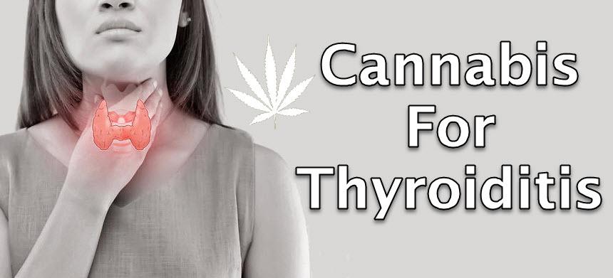 CANNABIS FOR THE THYROID