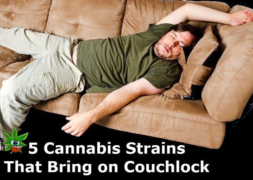 COUCH LOCK STRAINS