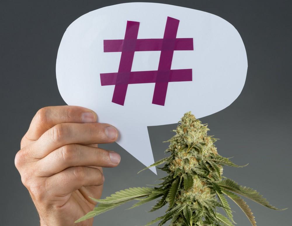 trending in cannabis 2021