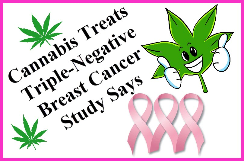 CANNABIS FOR TRIPLE X BREAST CANCER