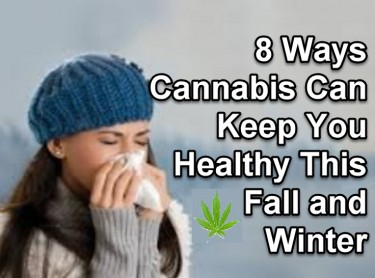 CANNABIS TO STAY HEALTHY IN THE WINTER