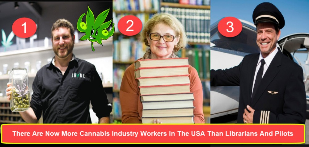 cannabis workers in america