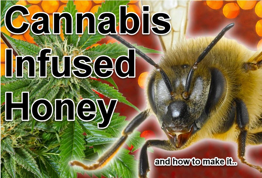 WHAT IS CANNA-HONEY AND CBD HONEY