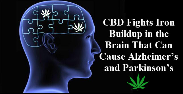cbd and alzhiermers