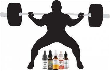 cbd for muscle building body building