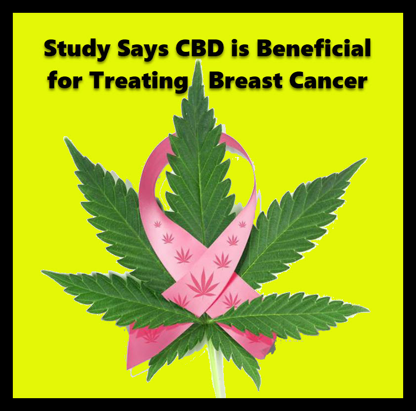 BREAST CANCER AND CBD