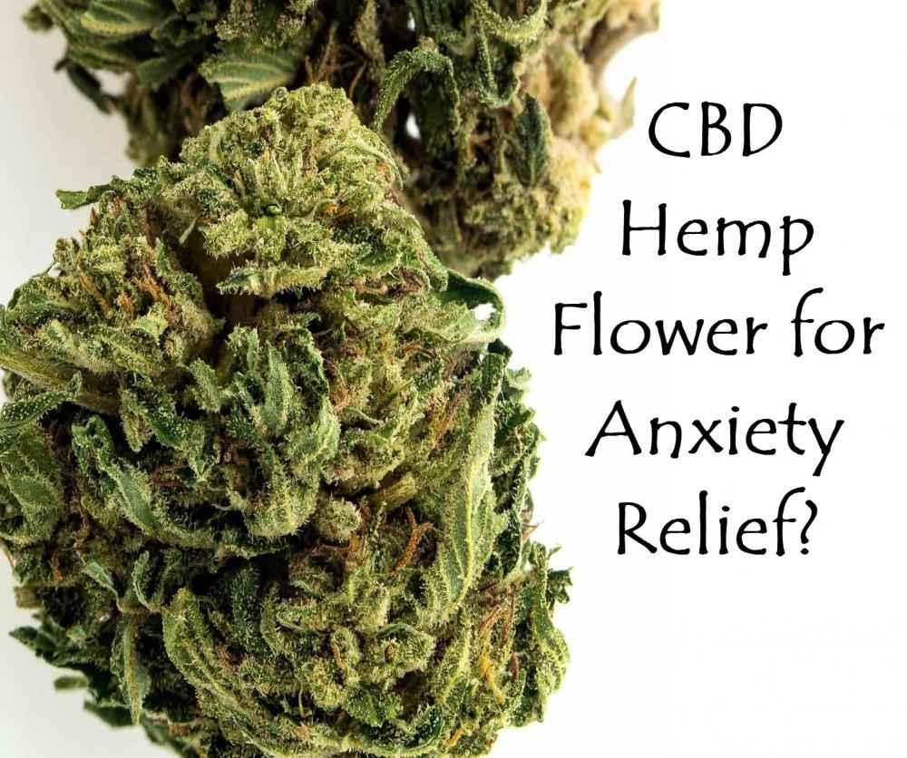 cbdforhempflowerfortheanxiety1 - What are the Health Benefits and Side Effects of Hemp Flower?