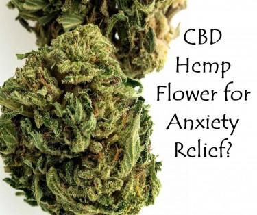 CBD HEMP FLOWER FOR ANXIETY