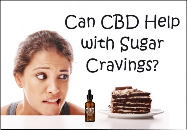 cbd for sugar cravings