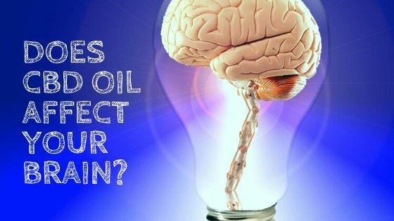 Does CBD Oil Affect Your Brain?