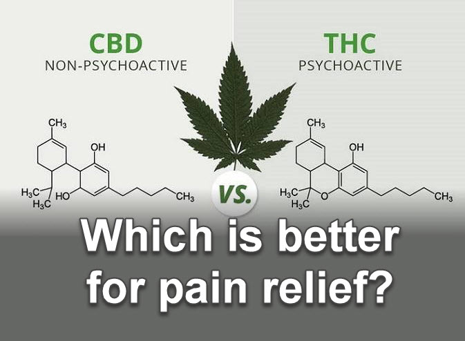 WHICH IS BETTER FOR PAIN RELIEF CBD THC