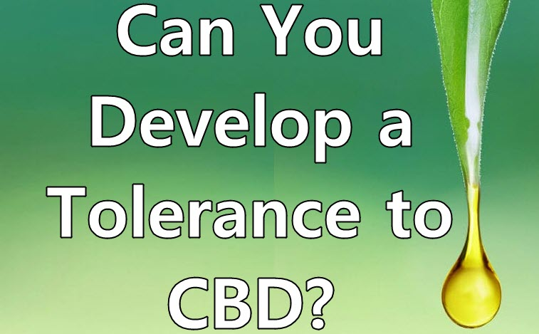 Does Cannabis Tolerance Influence Medicinal Benefits?