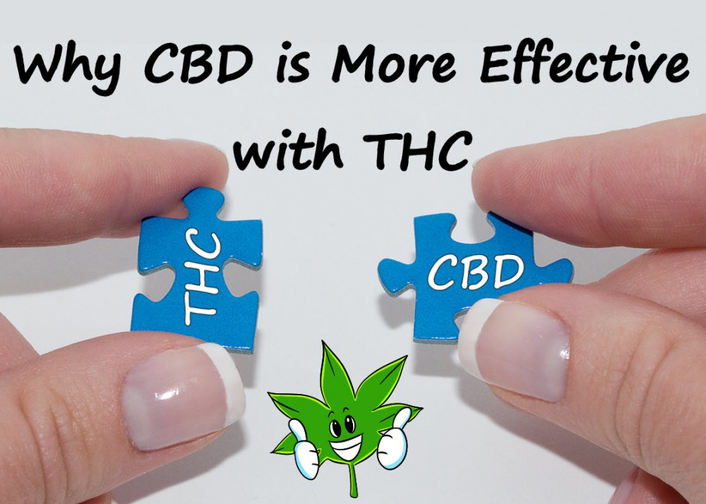 WHY CBD IS MORE EFFECTIVE WITH THC