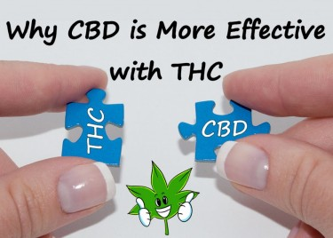 CBD WITH THC IS BETTER