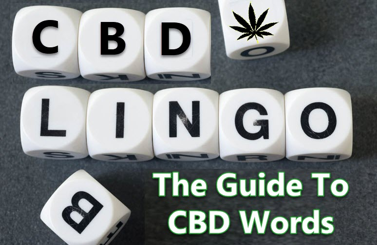 CBD NAMES AND WORDS