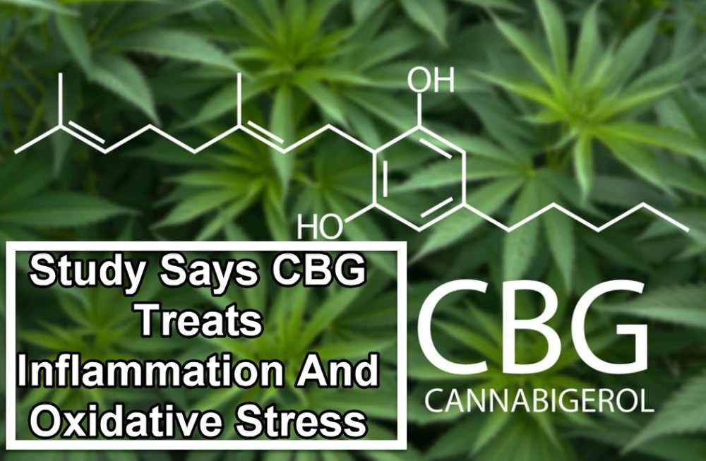 CBG AS AN ANTI-INFLAMMATORY