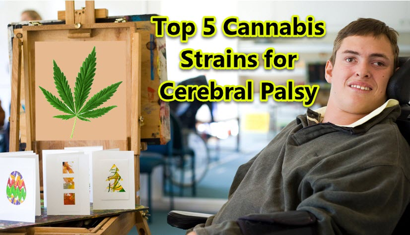 Top Cannabis Strains for Bell's Palsy