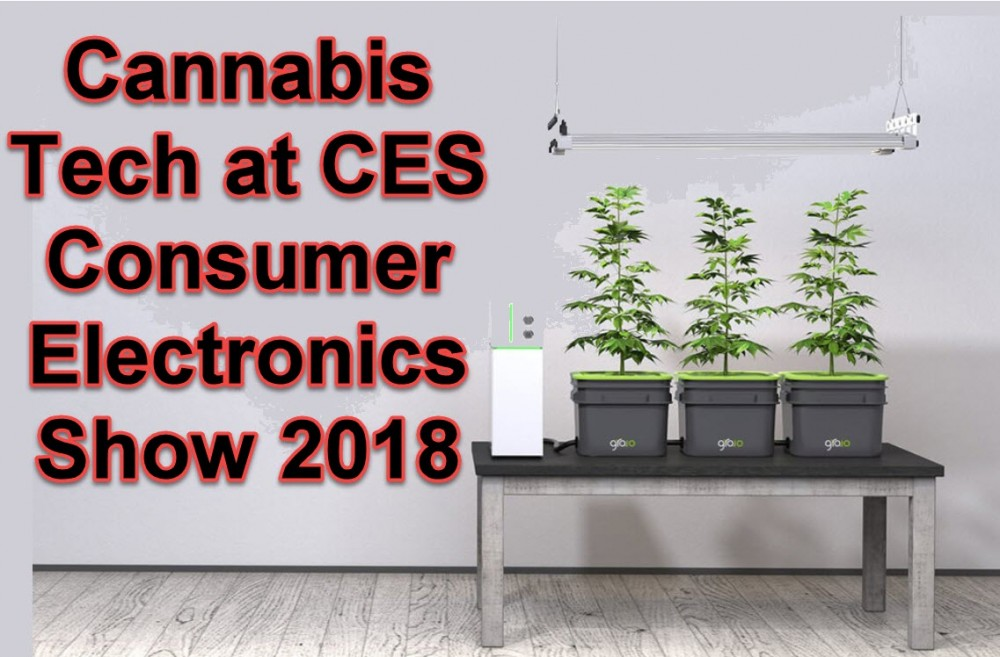 CANNABIS AT CES