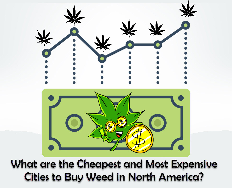 cannabis prices in north america