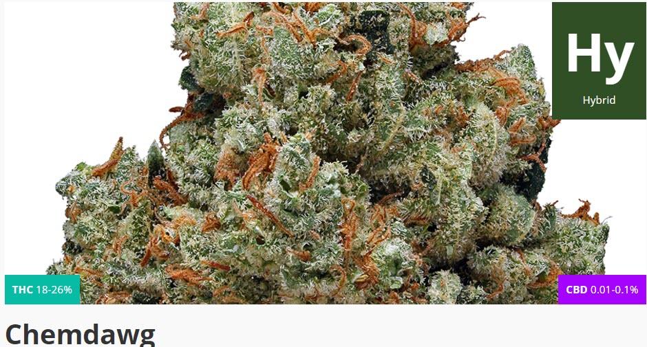 chemdawg marijuana