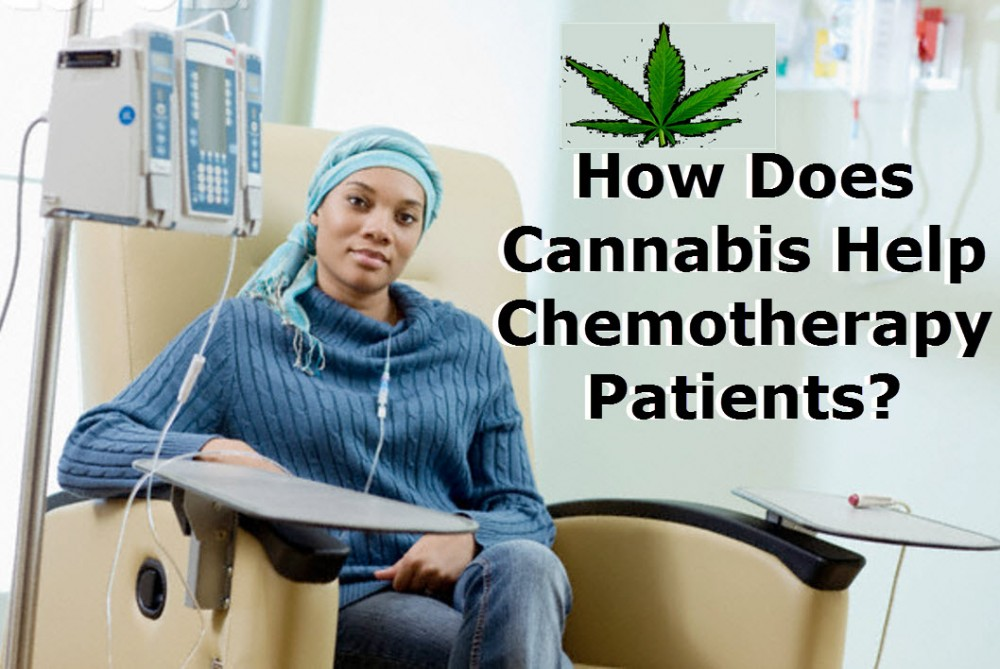 CANNABIS FOR CANCER CHEMOTHERAPY