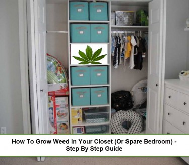 HOW TO START GROWING WEED IN YOUR CLOSET