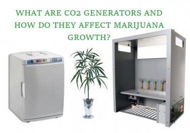 WHAT ARE CO2 GENERATORS FOR CANANBIS GROWING