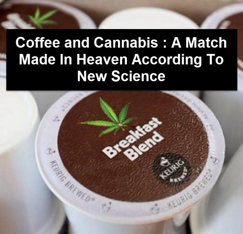 MARIJUANA COFFEE