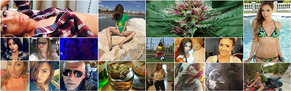 marijuana social network