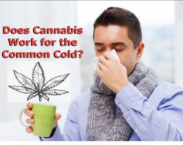 DOES WEED HELP FOR A COLD
