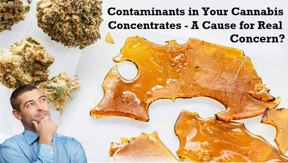 cannabis concentrates and contaiminants
