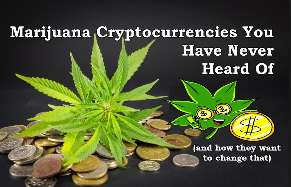 marijuana crypto currencies