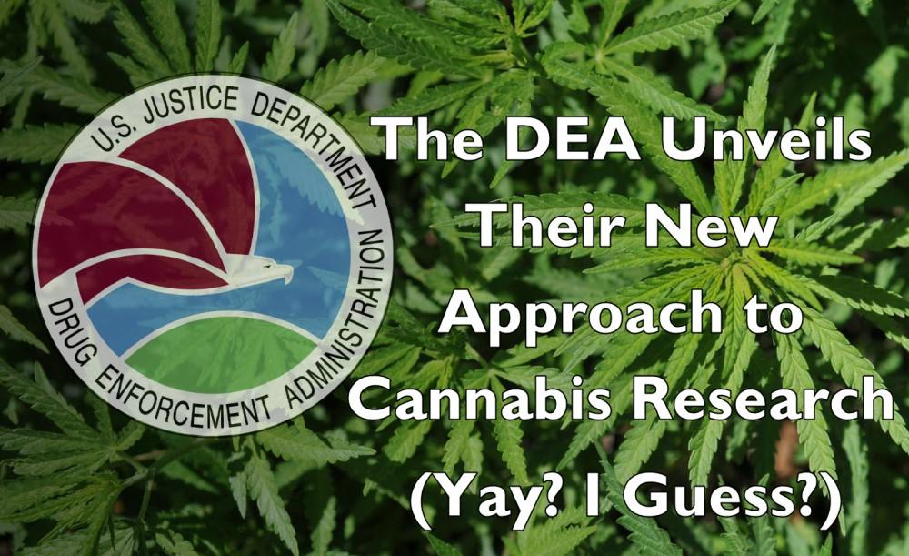 dea on marijuana growers