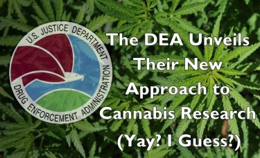 dea on cannabis research rules