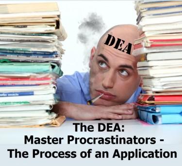 dea procrastination on marijuana