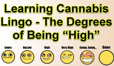 DEGREES OF BEING HIGH LANGUAGE