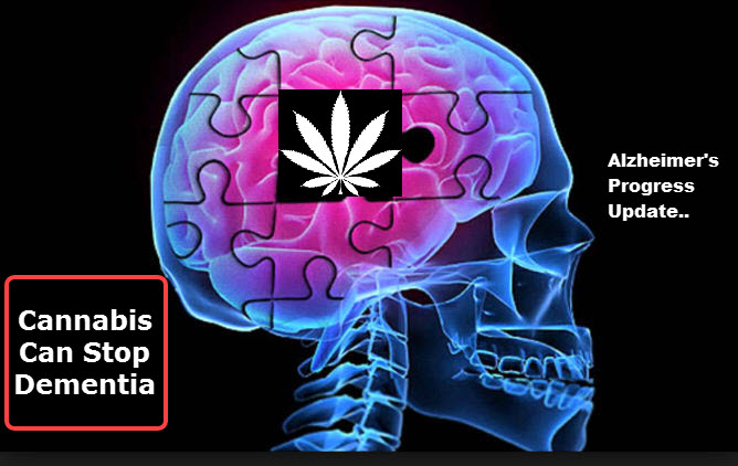 CANNABIS AND SLOWING DEMENTIA