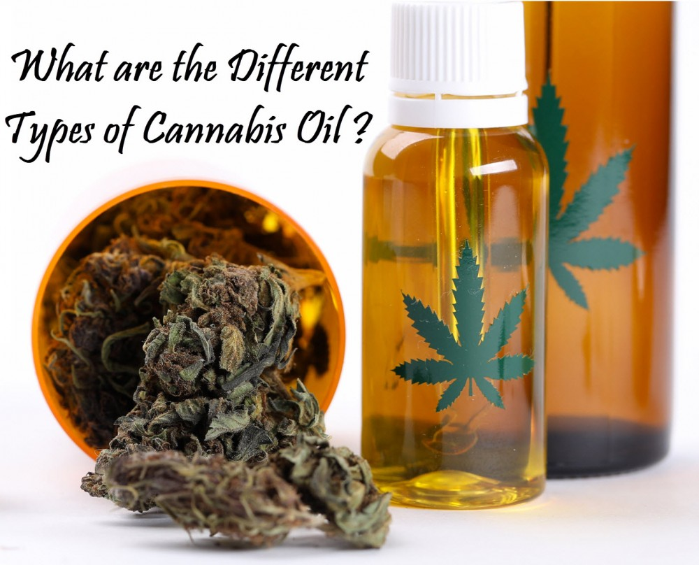 differenttypesofcananbisoil - What are the Different Types of Cannabis Oil - Benefits and Recommended Applications