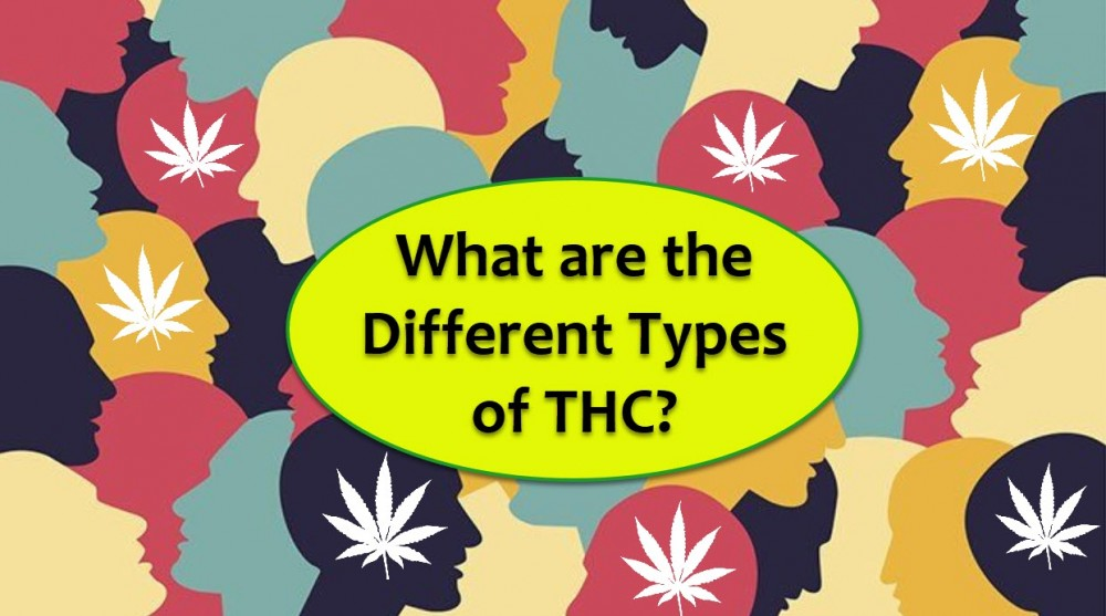DIFFERENT TYPES OF THC