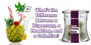 HEADSHOP DISPENSARY COLLECTIVE WHAT'S THE DIFFERENCE