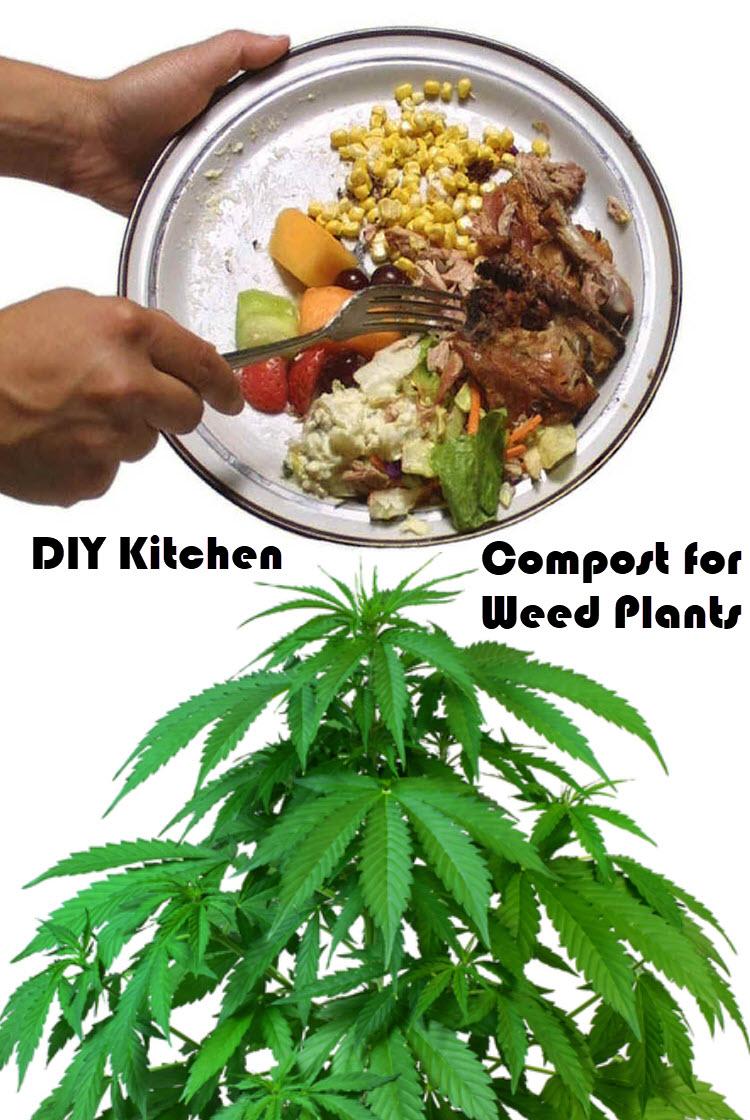 diykitchcompostmarijuanaplants - DIY Kitchen Compost for Your Cannabis Plants?