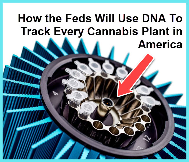 CANNABIS DNA TRACKING