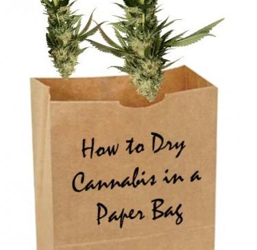 cannabis in a paper bag