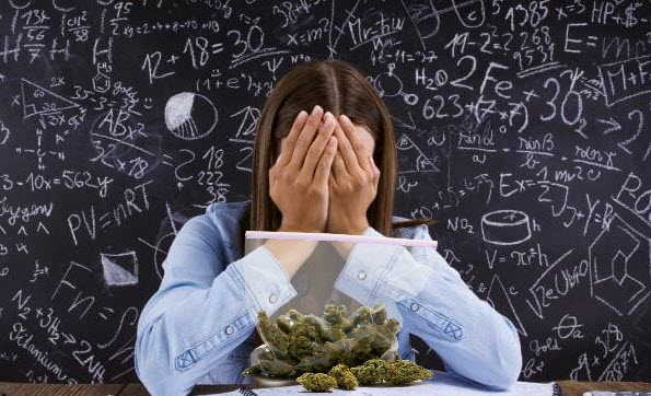 dumbcannabisstudies - Who is Paying for All These Asinine Cannabis Studies? You Are!