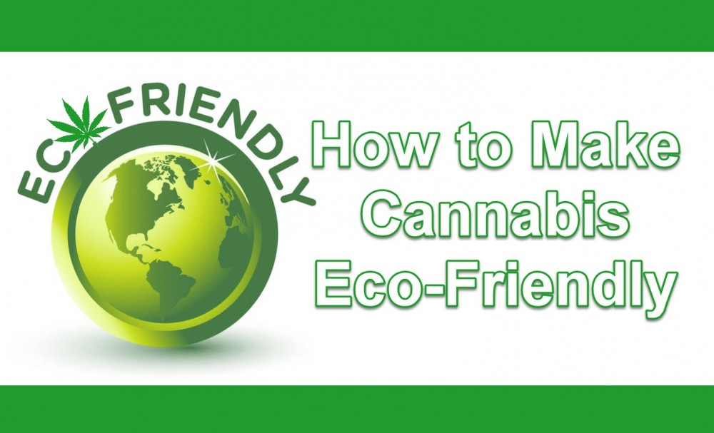 ecofriendlycannabis - How the Cannabis Industry Can be More Eco-Friendly Going Forward
