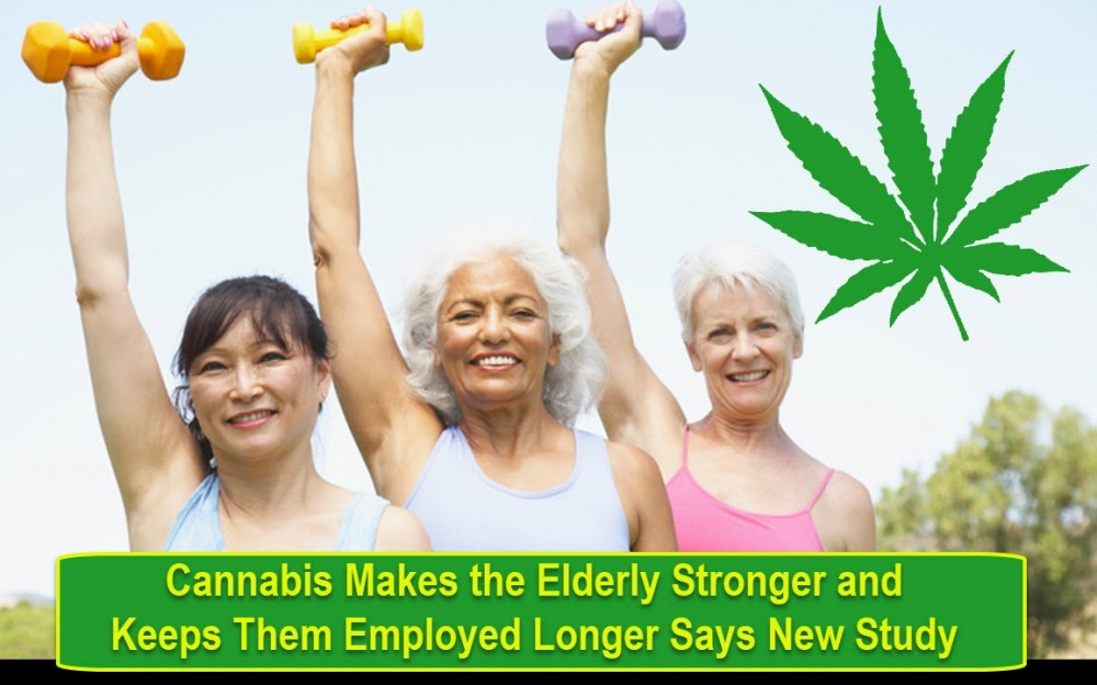 ELDERLY EXERCISE AND CANNABIS