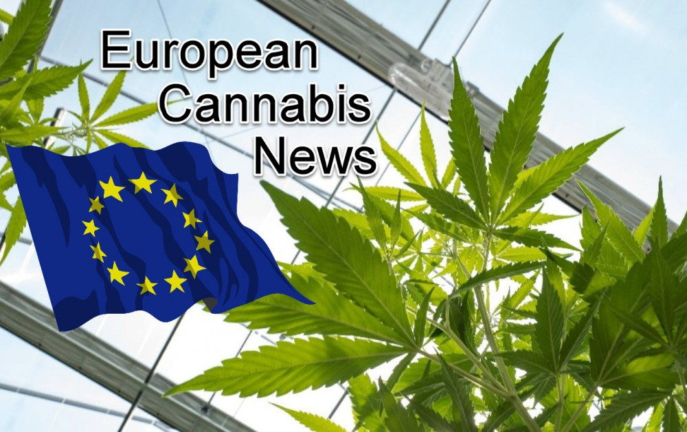 Cannabis Business News