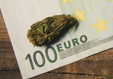 THE EUROPEAN MARIJUANA NEWS REPORT