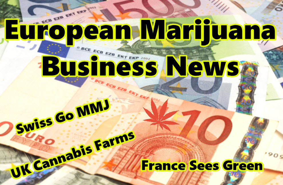 european marijuana businesses news