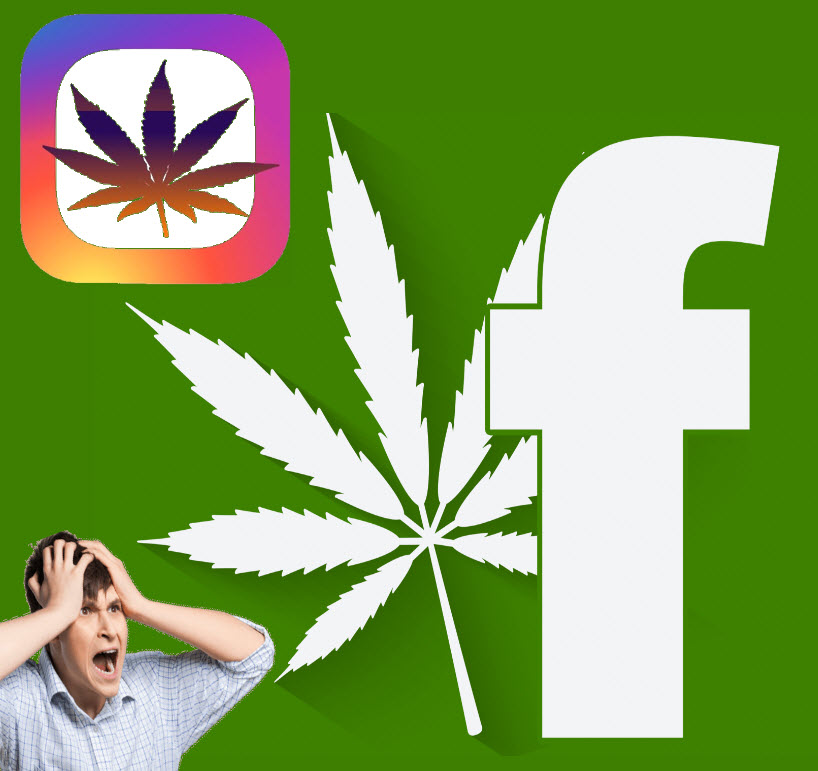 facebookandinstragramonweed - Are Facebook and Instagram Holding Back Cannabis Progress?